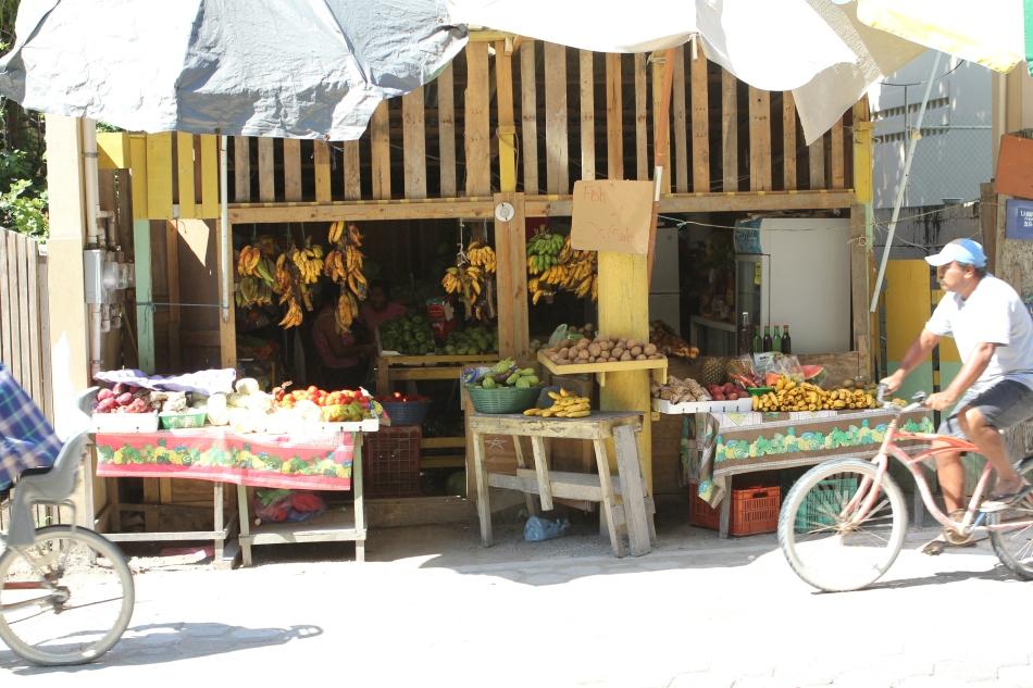 One of many little roadside shops selling fresh produce.