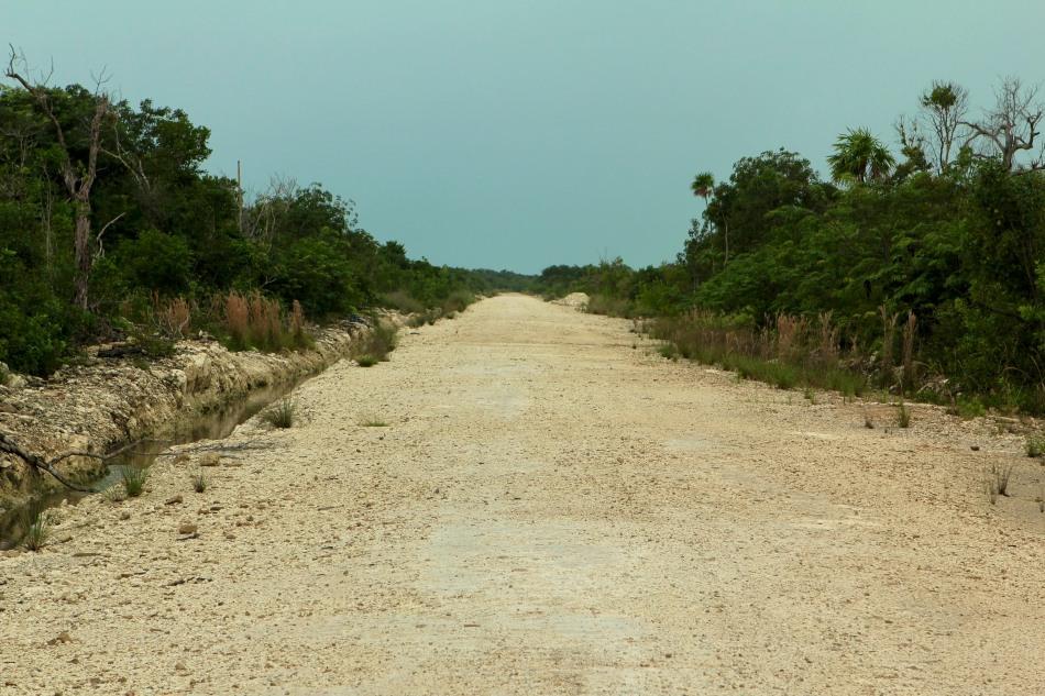 23km bike trip to Grand Belizean Estates.