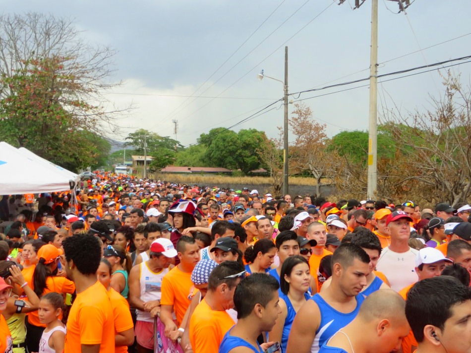 A view over the last quarter of the runners waiting to start.