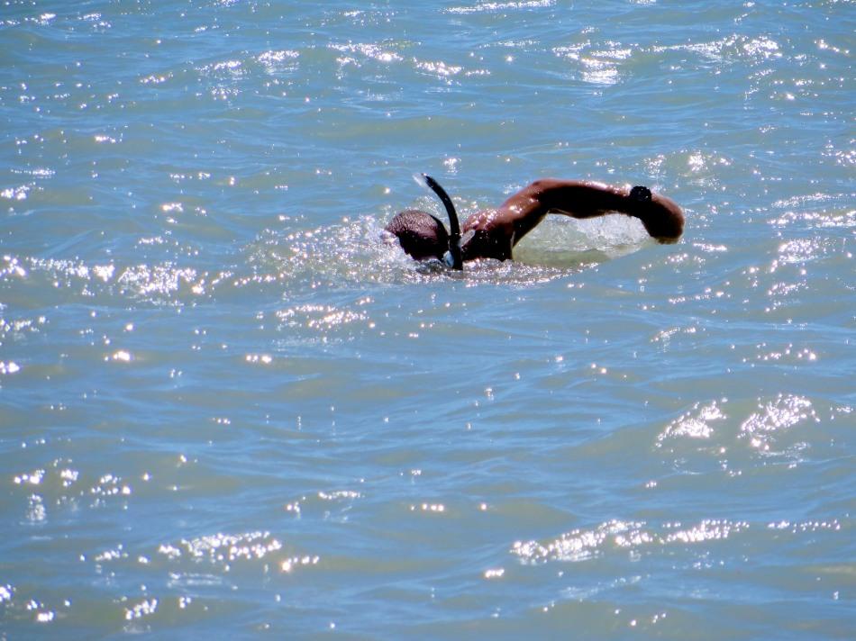"Swimming ""laps"" in the sea."