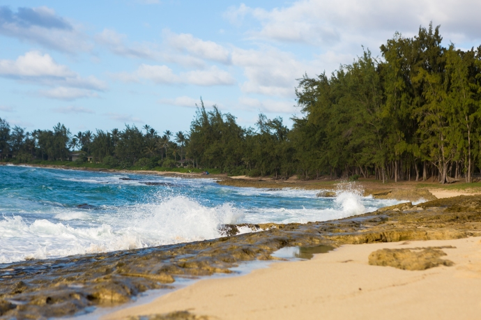 The north shore of Oahu in Turtle Bay.